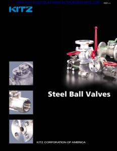 Kitz Steel Valves